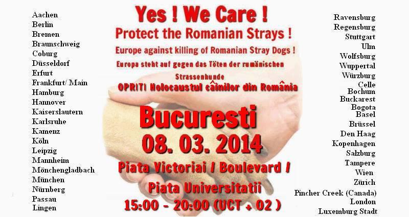 protest 8 martie