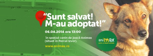 Duminică te invităm la o plimbare, PENTRU ANIMALE! In parcul Izvor, la ora 13.00
