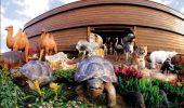 Putea NOE sa urce toate animalele Pamantului pe ARCA?
