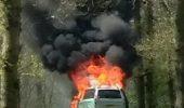 """""""Maşina noastră e în flăcări şi suntem înconjuraţi de LEI! Ce facem, ne dăm jos sau rămânem la locul nostru?!"""" Vezi ce decizie a luat o mamă pentru copiii ei"""