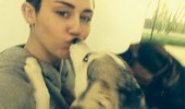 rs_634x847-131210141157-634.miley-cyrus-dogs.cm.121013
