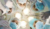 Un nou succes medical: organ imunitar, regenerat intr-un animal viu.