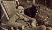 Germania şi câinele Blondi, marile iubiri ale lui Hitler