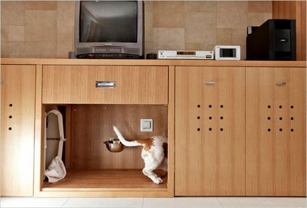 Casa animale4