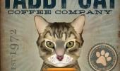 Postere pisici (2)