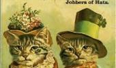 Postere pisici (26)