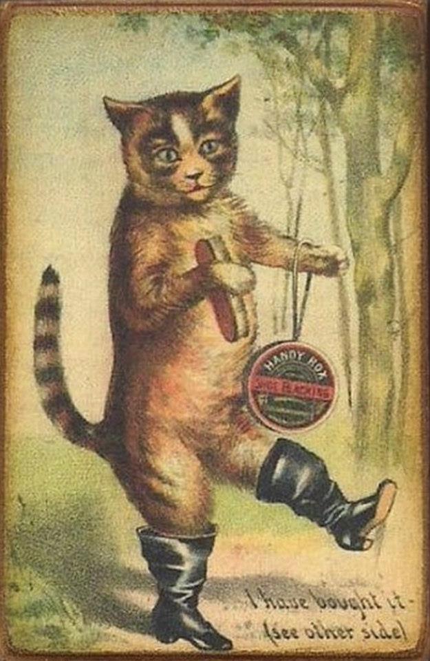 Postere pisici (27)