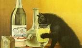 Postere pisici (30)