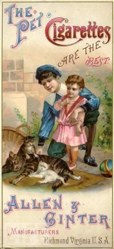 Postere pisici (4)