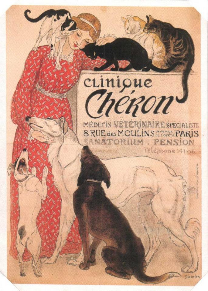 Postere pisici (48)