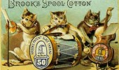 Postere pisici (50)