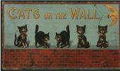 Postere pisici (55)