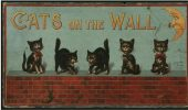 Mituri despre pisici