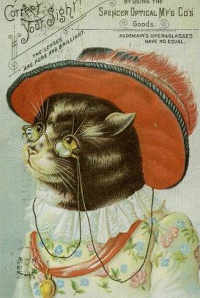 Postere pisici (58)