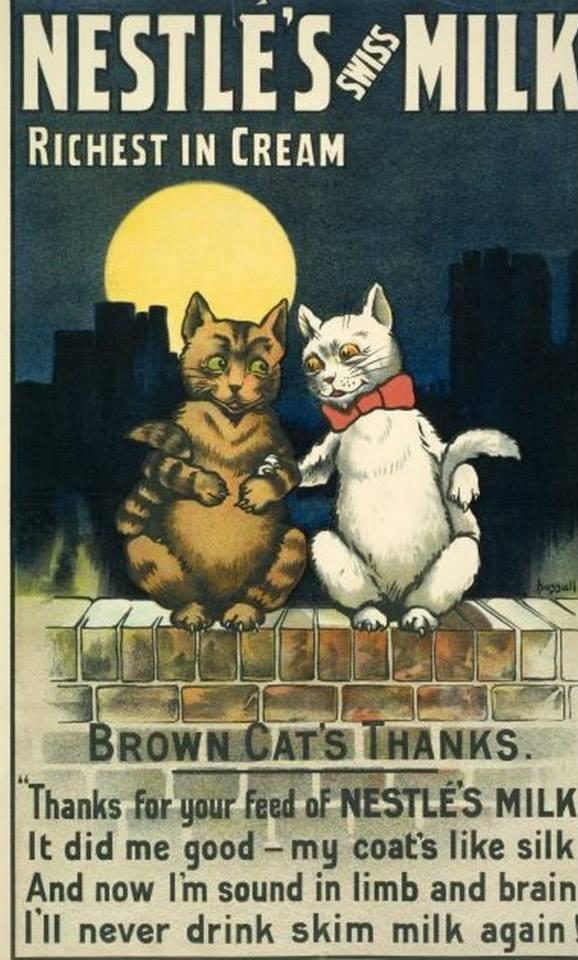 Postere pisici (62)