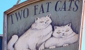 Postere pisici (67)