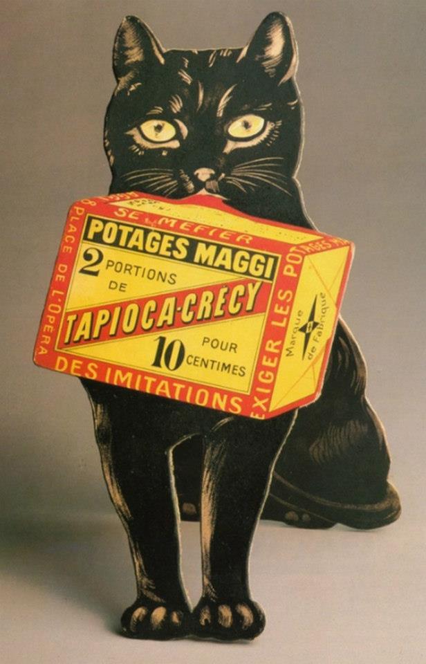 Postere pisici (68)
