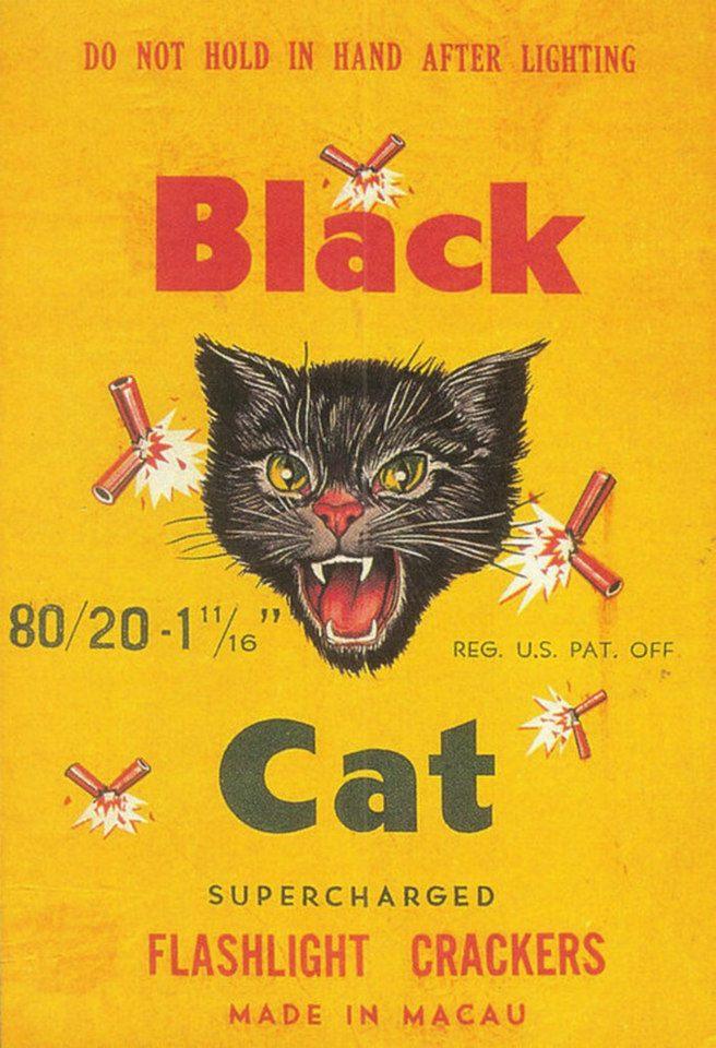 Postere pisici (7)