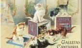 Postere pisici (72)