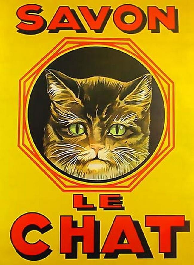 Postere pisici (78)