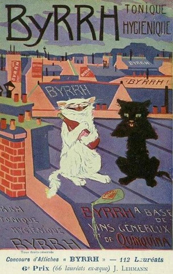 Postere pisici (79)