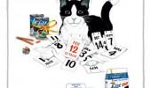 Postere pisici (80)