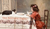 Postere pisici (84)