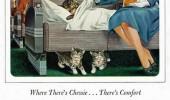 Postere pisici (92)