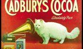 Pisicile au inspirat mereu publicitarii