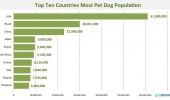 Top-countries-with-most-pet-dogs-population