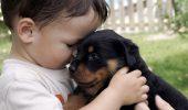 Cele mai potrivite animale pentru copiii mici