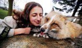 Un vulpoi surd de 11 luni se crede câine