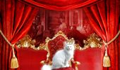 The_Royal_Cat_by_deadlulu