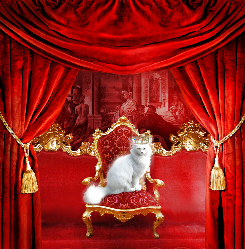 The_Royal_Cat_by_deadlulu