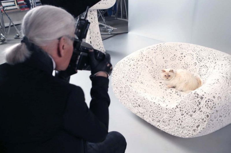 choupette-lagerfeld-shooting-800x533