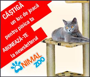 Concurs abonare newsletter Animalzoo.ro