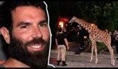Un milionar a dat petrecere cu o GIRAFA! Totul a mers prea departe…