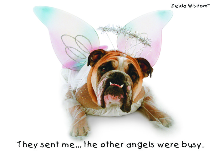 They sent me...the other angels were busy.(Blank inside)