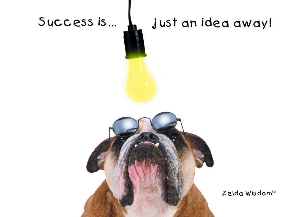 zwim0129-lightbulb-1024x731