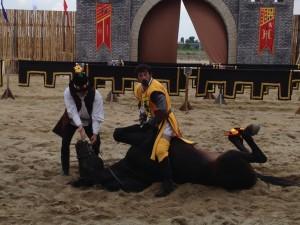 calul cu roatele in sus doi
