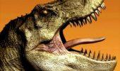 Prin Valea Dinozaurilor