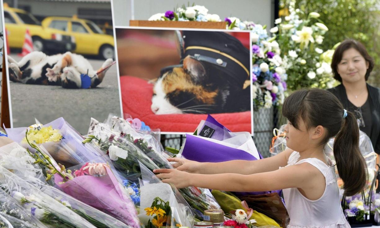 foto: theguardian.com