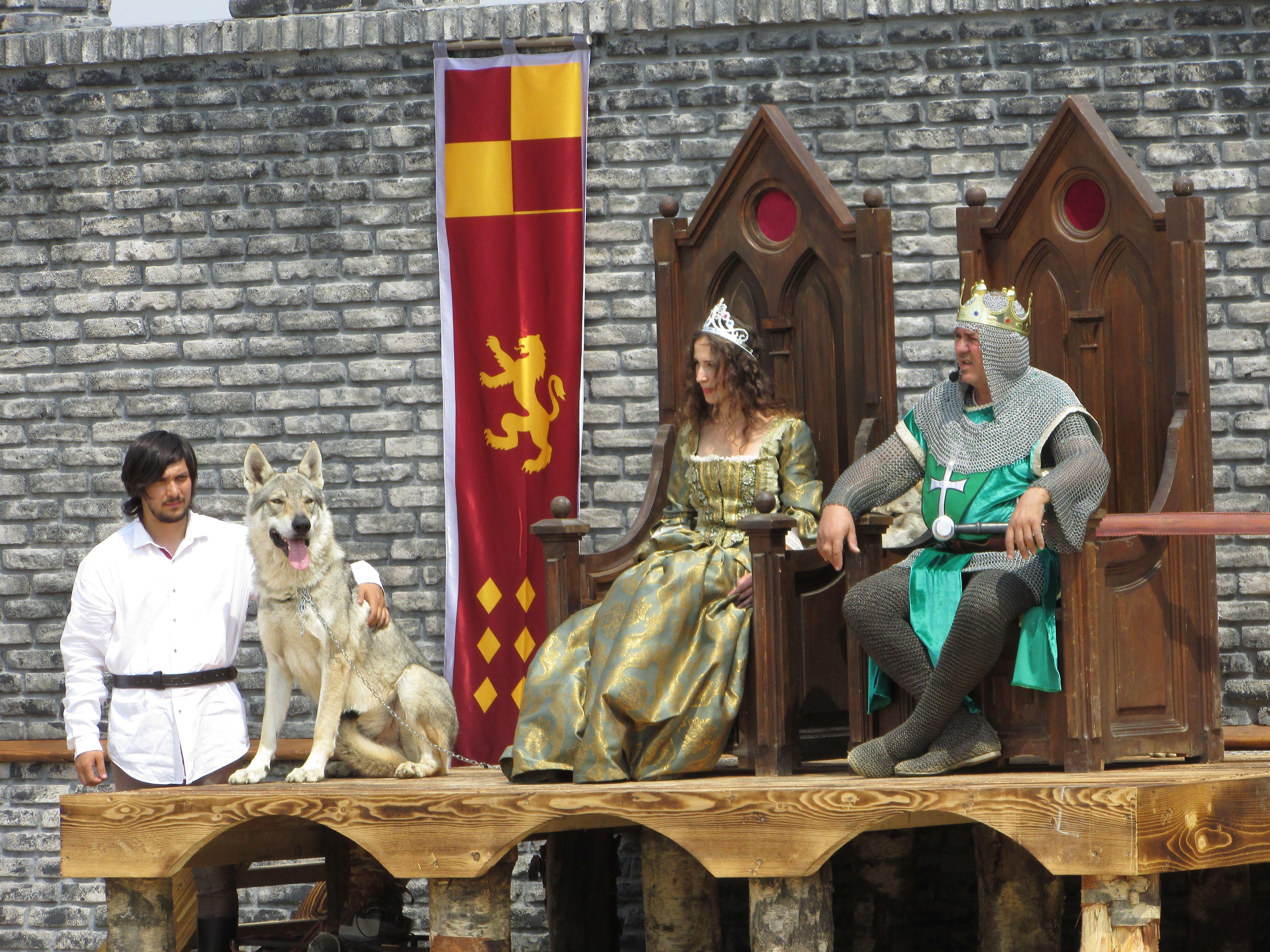 lupul langa rege si printesa