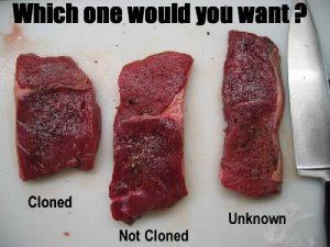 Consumam produse alimentare fabricate din animale clonate?