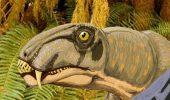 Pana la 80% dintre toate vertebratele terestre au disparut in urma cu 260 de milioane de ani