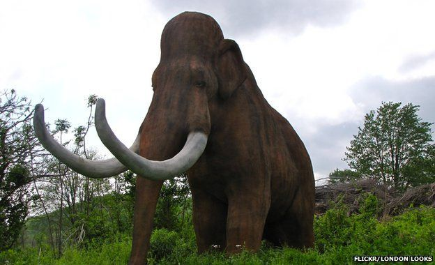 mamut 1