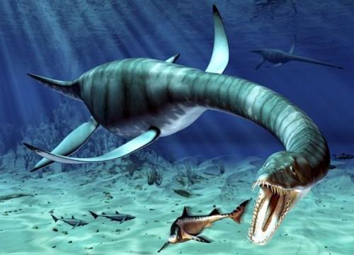 Monstrul din Loch Ness sau doar un somn?