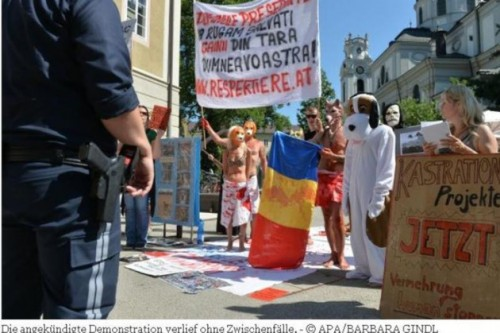 Protest fata de eutanasierea cainilor, la Salzburg