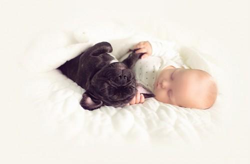 bebe si catel2