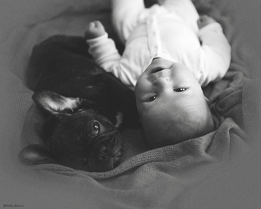 bebe si catel3